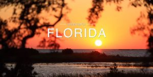 florida sunshine state