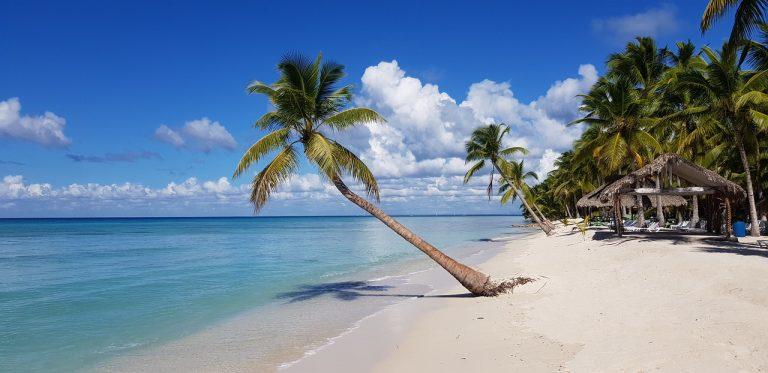 beach, palm trees, The Bahamas