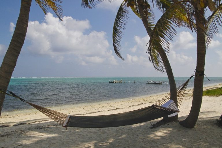 St Kitts and Nevis, hammock, palm trees