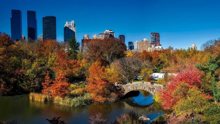 central park, new york city, urban