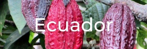 chocolatey destination ecuador